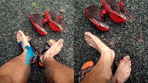11 Juan De Fuca Trail 50k